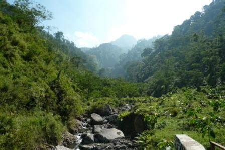 Mt Muria