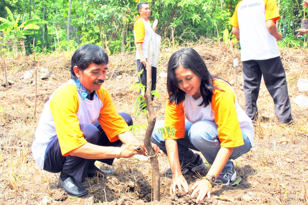 Everyone plants some trees