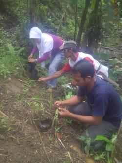 Novita, Trees4Trees staff with local villagers planting vetiver