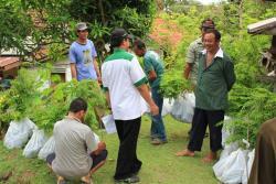 Mr. Mahmud, T4T Field Coordinator distributing Albizia seedlings to farmers at Binangun Target Area, Cilacap.