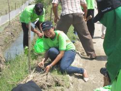 Trees Planting: 1000 Mahogany