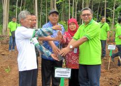 Trees Planting: 1000 Albizia