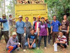 Harvesting responsible wood