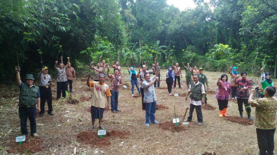 Trees Planting in Podorejo by Cargill and Trees4Trees